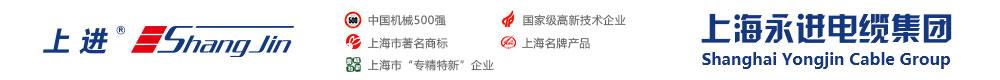 上海永进电缆(集团)有限公司-官方网站